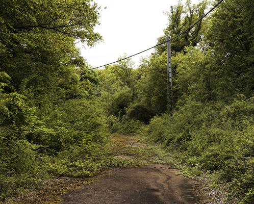 Abandoned portion near Nogent-sur-Vernisson.